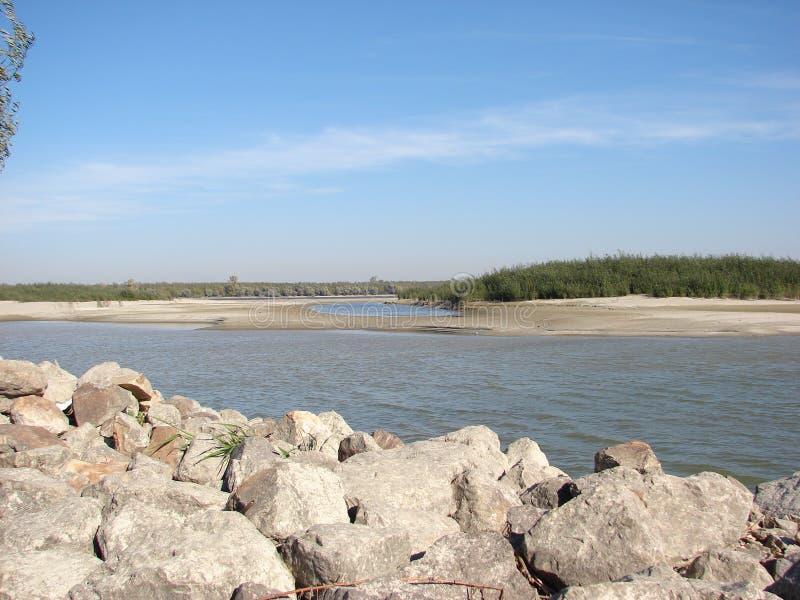 岩石有柳树的多瑙河障碍和沙子海岛 库存图片