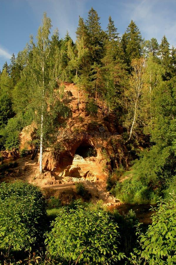 岩石森林的小山 库存图片
