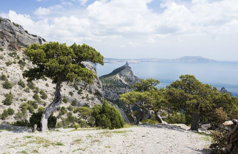 岩石横向的山 免版税图库摄影