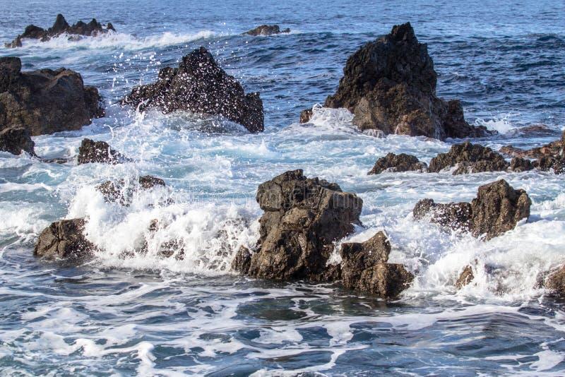 岩石海海岸线 库存照片