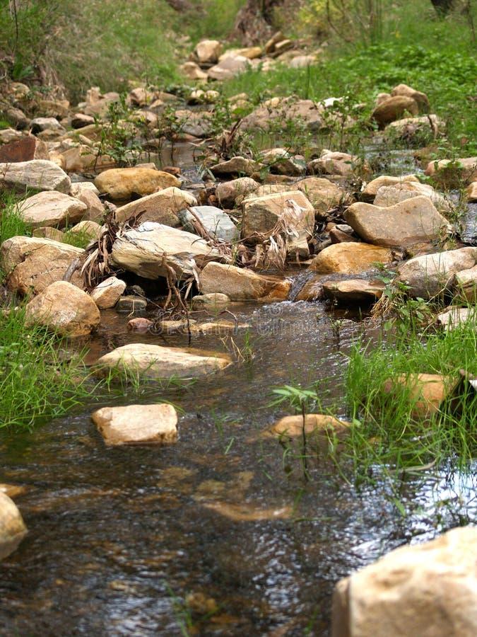 岩石的小河 免版税库存照片