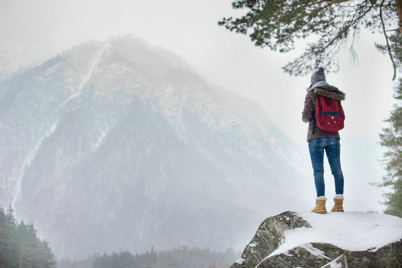 岩石的旅客 免版税库存图片