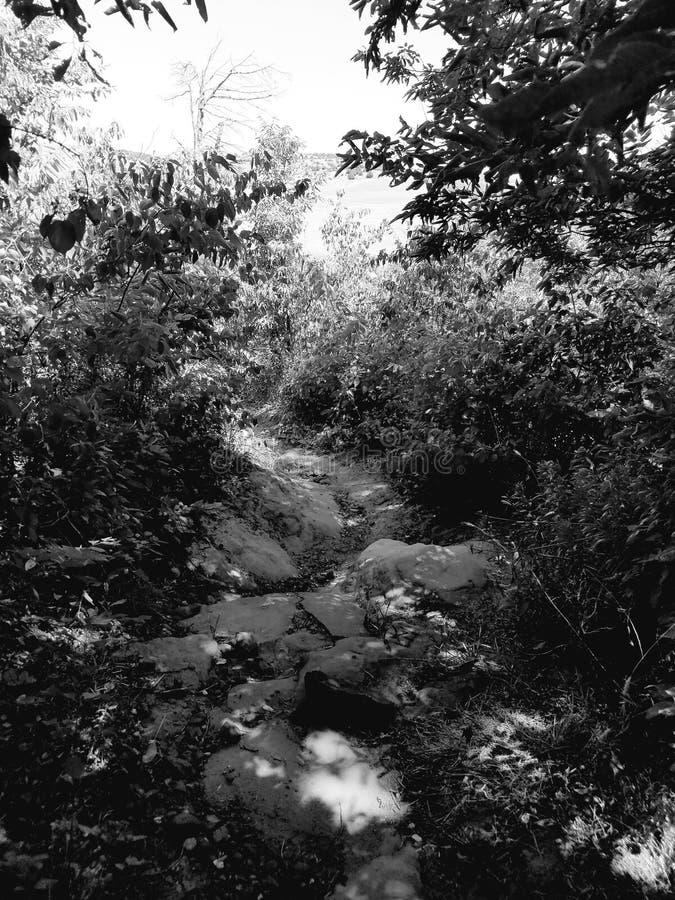 岩石的路径 库存图片