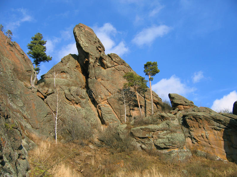 岩石相似与鸟 库存照片