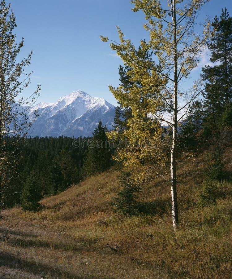 岩石秋天英国加拿大哥伦比亚的山 图库摄影