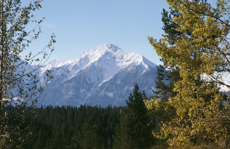 岩石秋天英国加拿大哥伦比亚的山 免版税库存图片