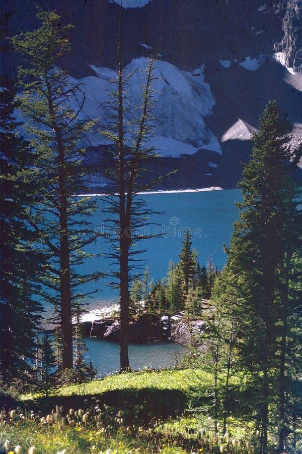 岩石英国加拿大哥伦比亚湖的山 免版税图库摄影