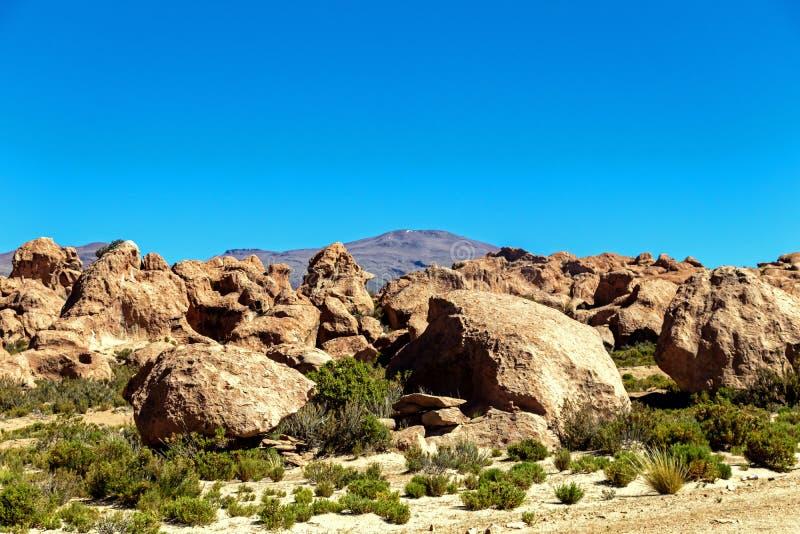 岩石谷在玻利维亚,南美洲的阿尔蒂普拉诺高原 免版税库存照片
