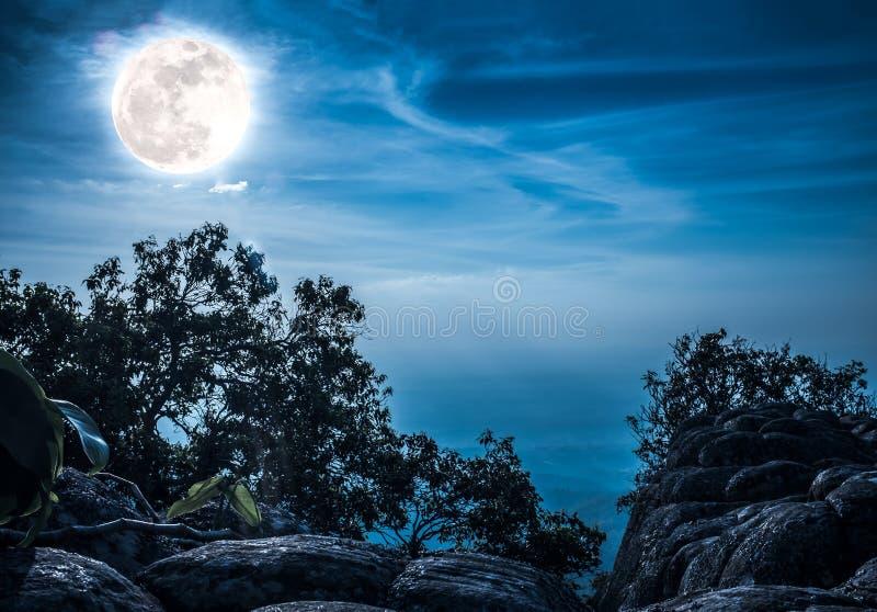 岩石风景反对蓝天和满月的在wildernes上 免版税库存图片
