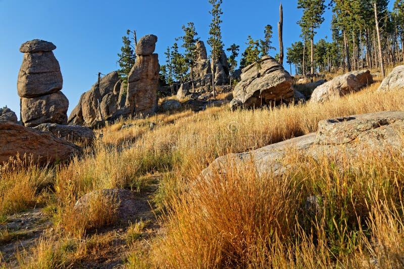 岩石风景在针的,Custer公园 免版税库存图片