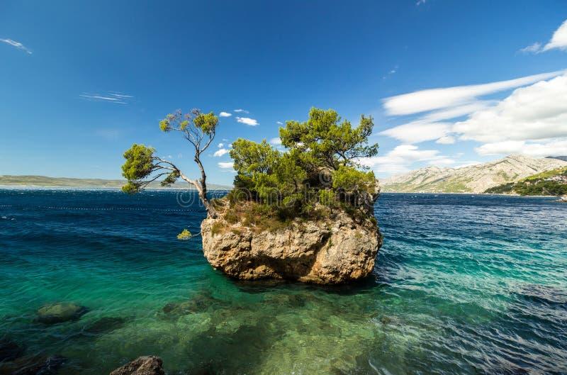 岩质岛美好的风景在Brela,马卡尔斯卡里维埃拉,达尔马提亚,克罗地亚 图库摄影