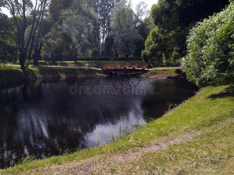 岸池塘在公园在夏天 图库摄影