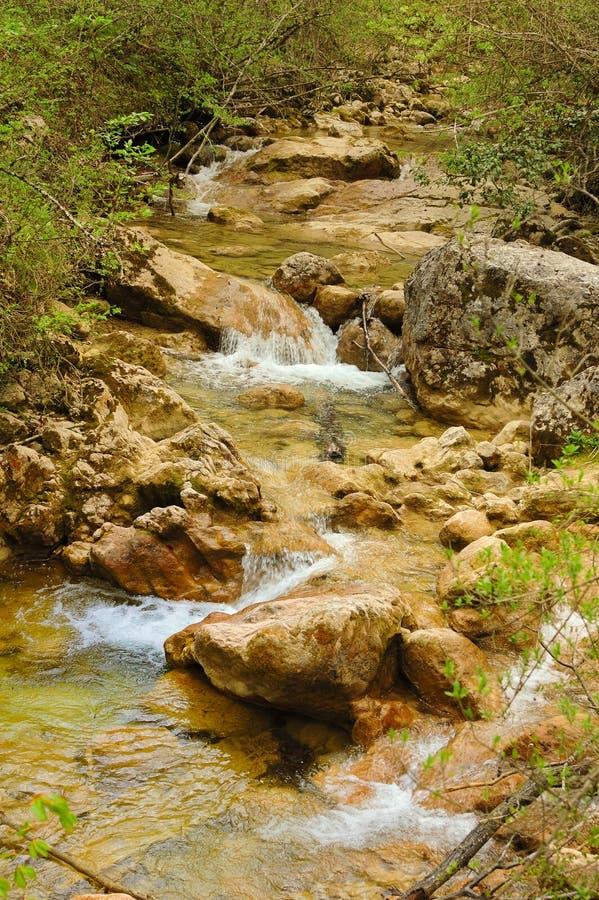 峡谷克里米亚全部河小的春天 免版税库存照片