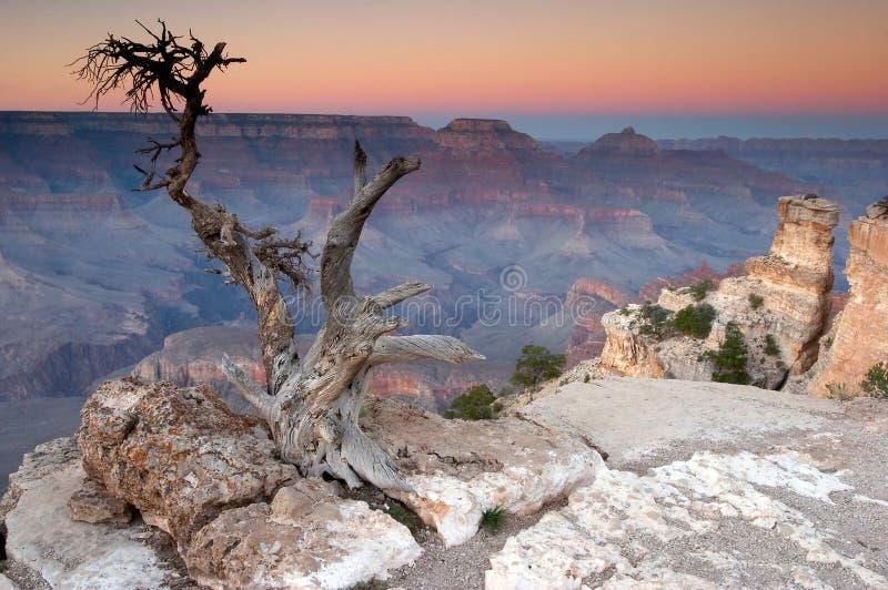 峡谷全部日落 免版税图库摄影