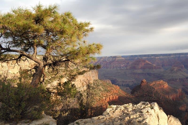 峡谷全部视图 图库摄影