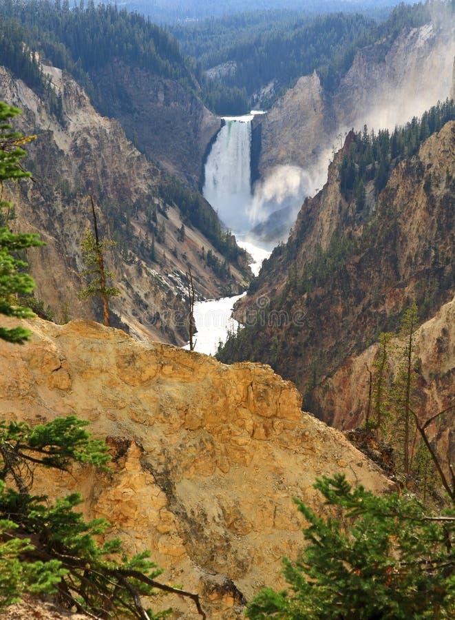 峡谷全部黄石 库存图片