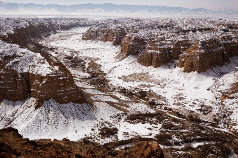 峡谷在哈萨克斯坦沙漠  免版税库存图片