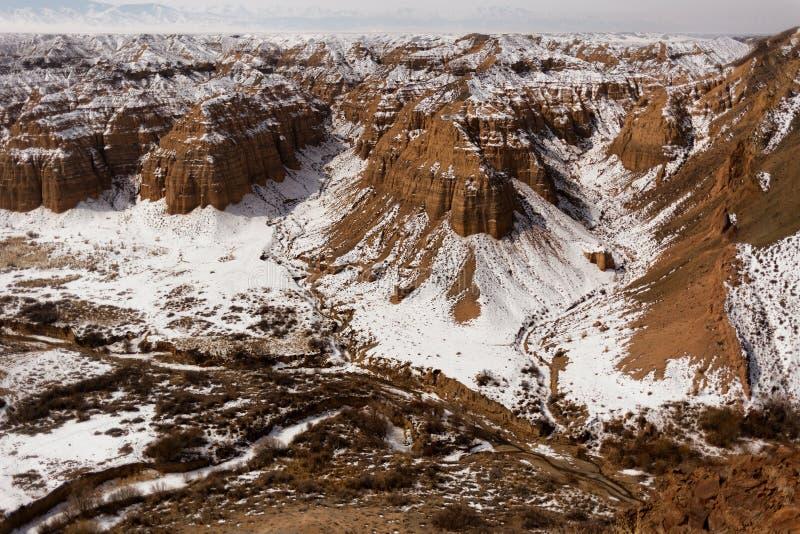 峡谷在哈萨克斯坦沙漠  库存照片