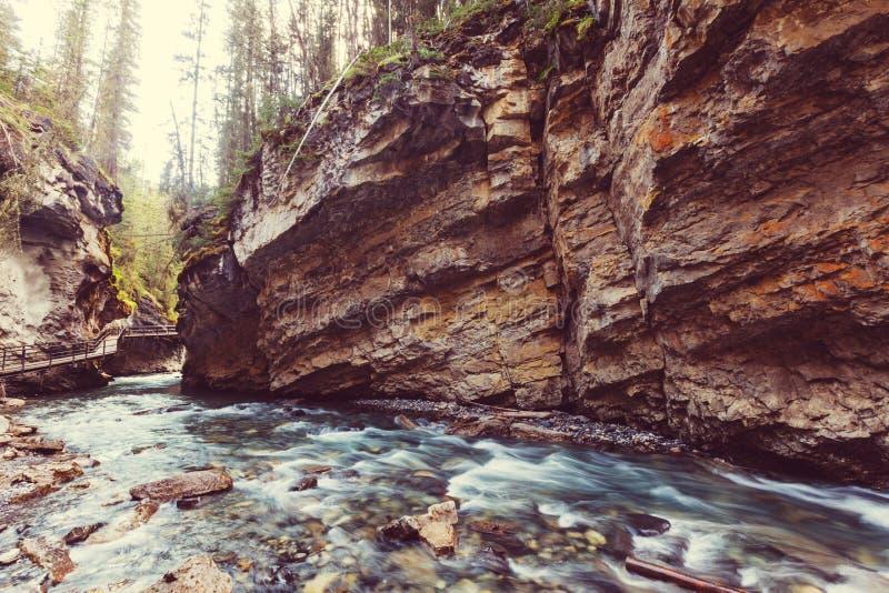 峡谷在班夫NP 库存照片