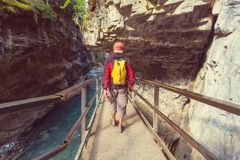 峡谷在班夫NP 免版税库存图片