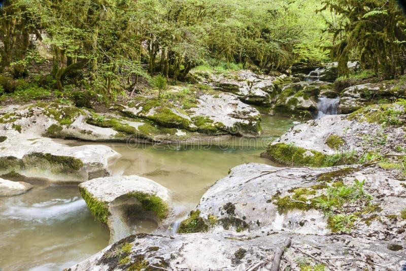 峡谷在阿布哈兹 免版税库存照片
