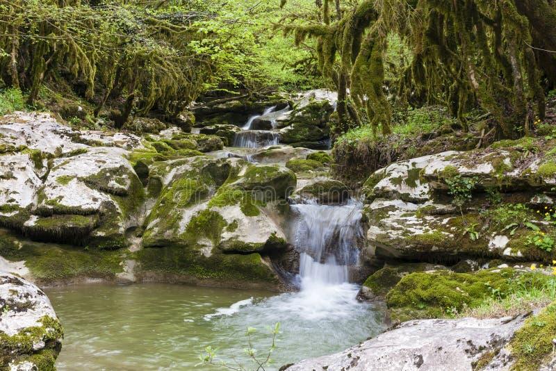 峡谷在阿布哈兹 库存照片