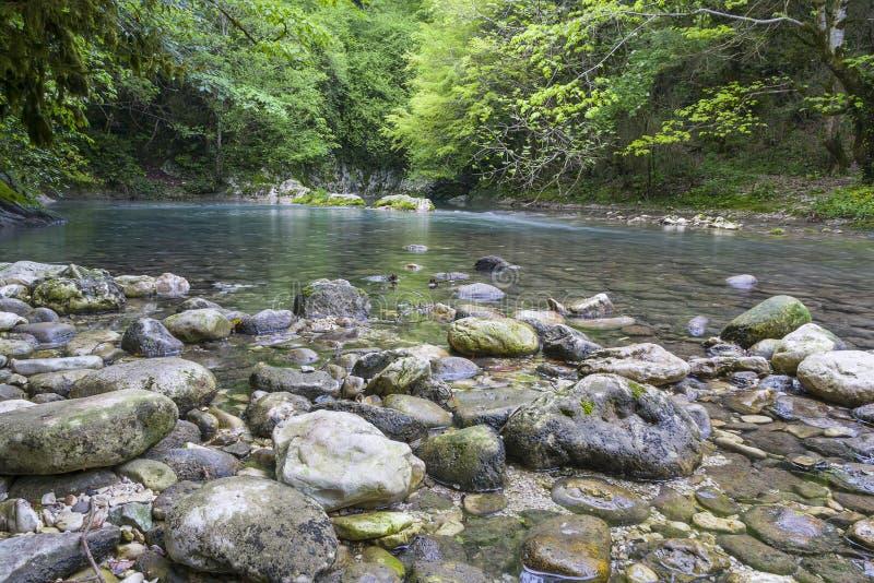 峡谷在阿布哈兹 库存图片