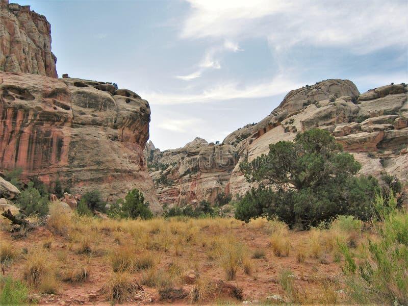 峡谷外缘红色岩石  免版税库存照片