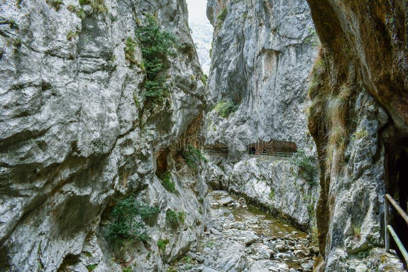 峡谷的看法在迁徙路线,阿斯图里亚斯的关心的 库存图片
