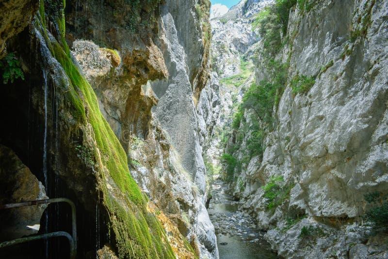 峡谷的看法在迁徙路线,阿斯图里亚斯的关心的 免版税库存照片