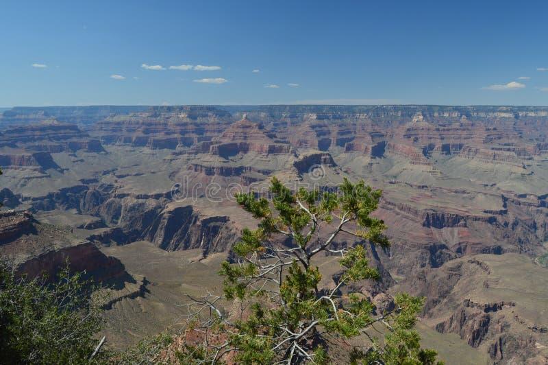 峡谷科罗拉多全部河 E 地质的形成 图库摄影