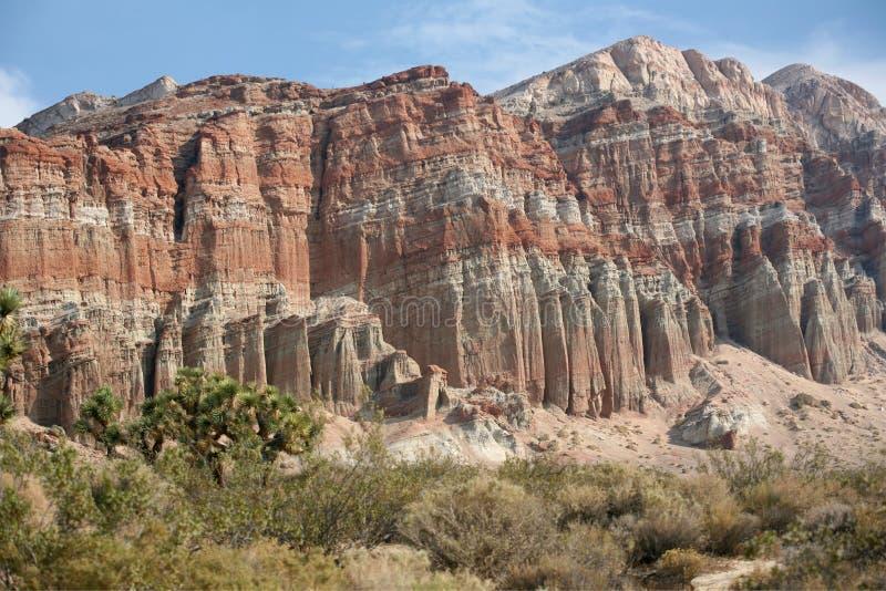 峡谷红色岩石 免版税库存照片