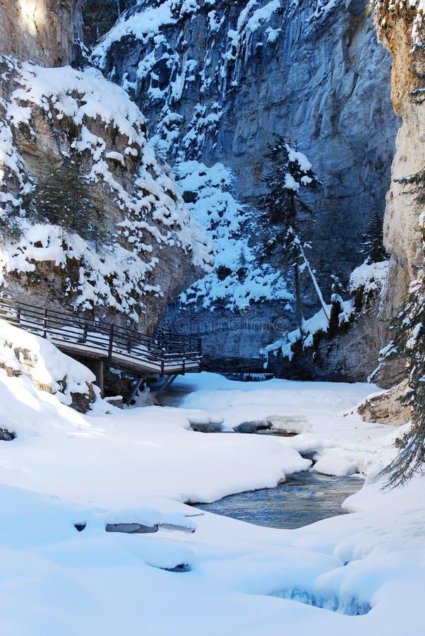 峡谷约翰逊冬天 库存照片