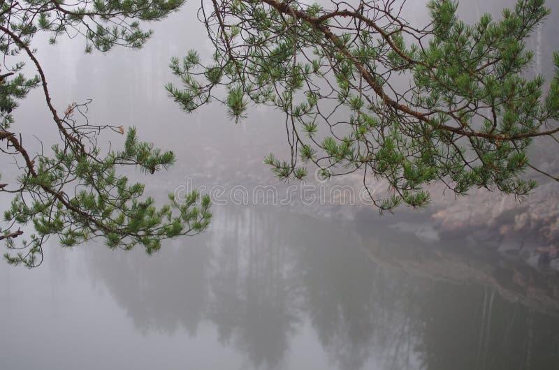 峡谷芬兰imatra河 库存照片