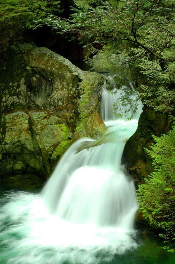 峡谷落林恩双胞胎瀑布 库存图片