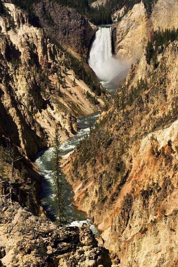 峡谷落黄石 库存照片