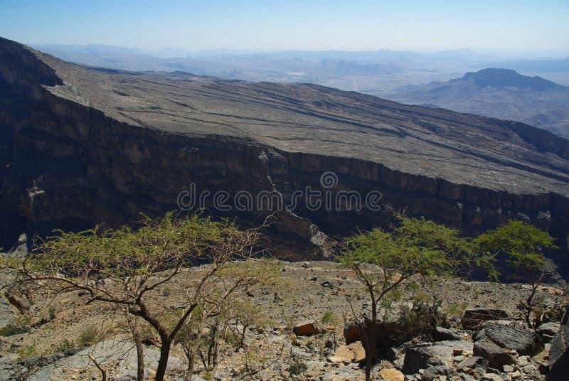 峡谷阿曼 库存图片