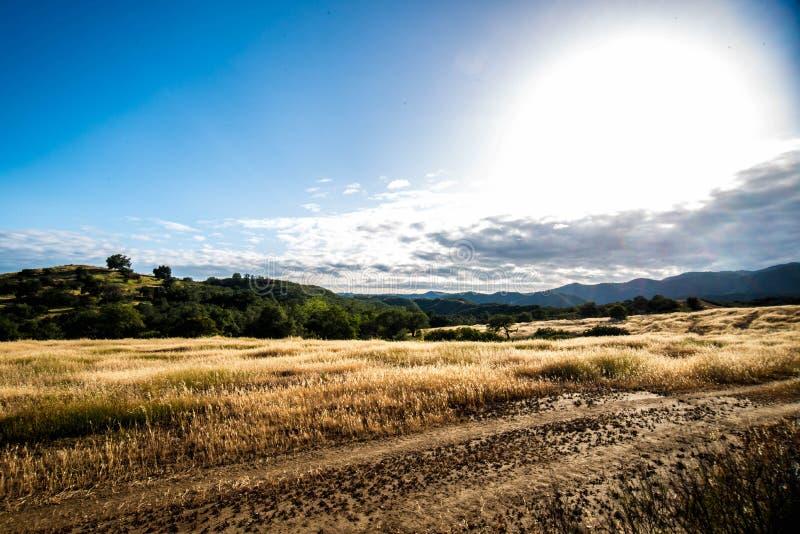 峡谷领域 免版税图库摄影
