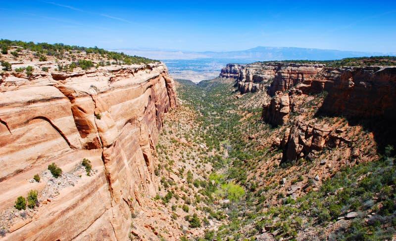 峡谷高mesas 库存图片