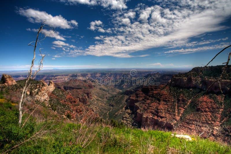 峡谷cloudscape全部超出 免版税库存照片