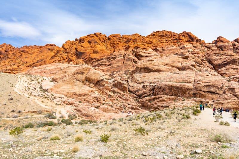 峡谷las红色岩石维加斯 库存照片