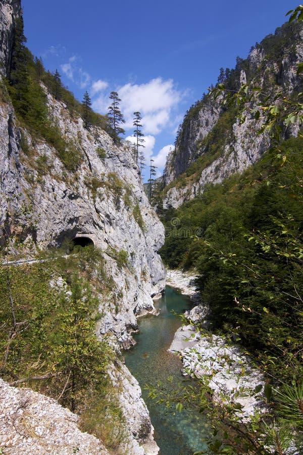 峡谷montenegro塔拉 库存图片