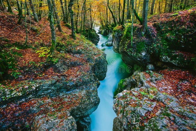 峡谷Mostnica的意想不到的看法 库存图片
