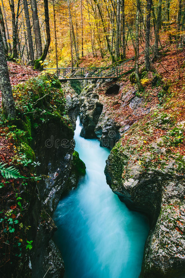 峡谷Mostnica (Mostnice Korita)的意想不到的看法 免版税库存照片