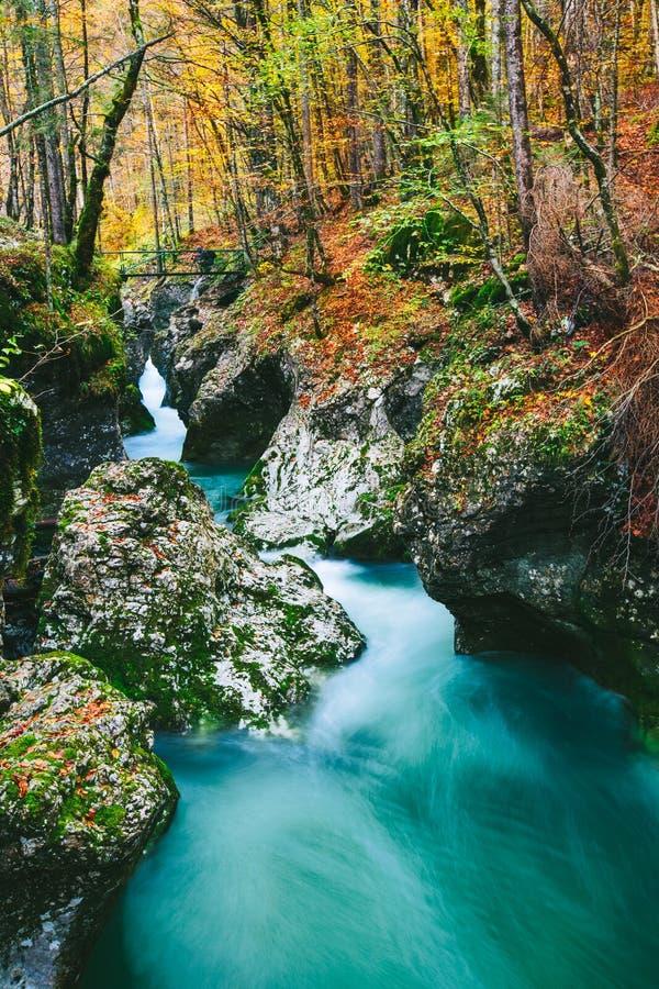 峡谷Mostnica (Mostnice Korita)的意想不到的看法 库存照片