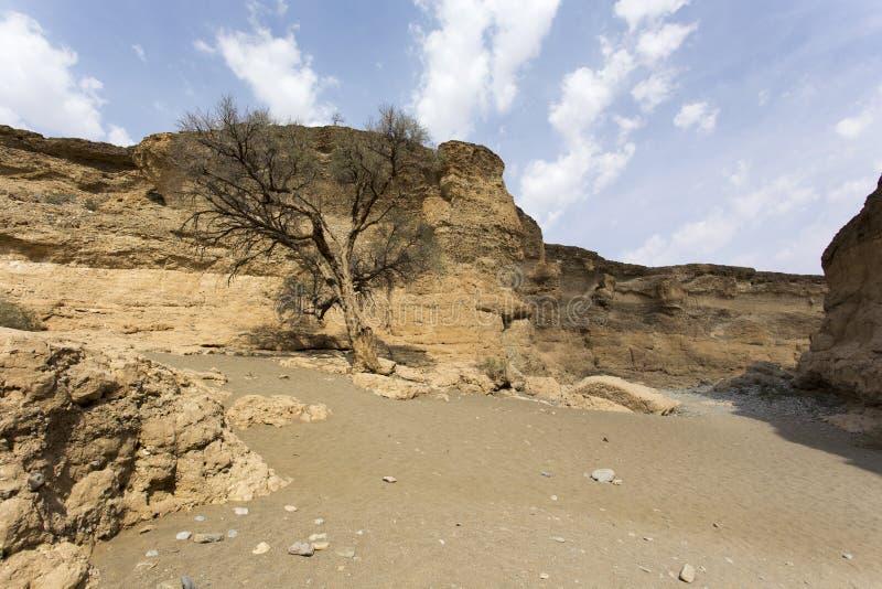 峡谷namib纳米比亚国家naukluft公园sesriem sossusvlei 免版税库存照片