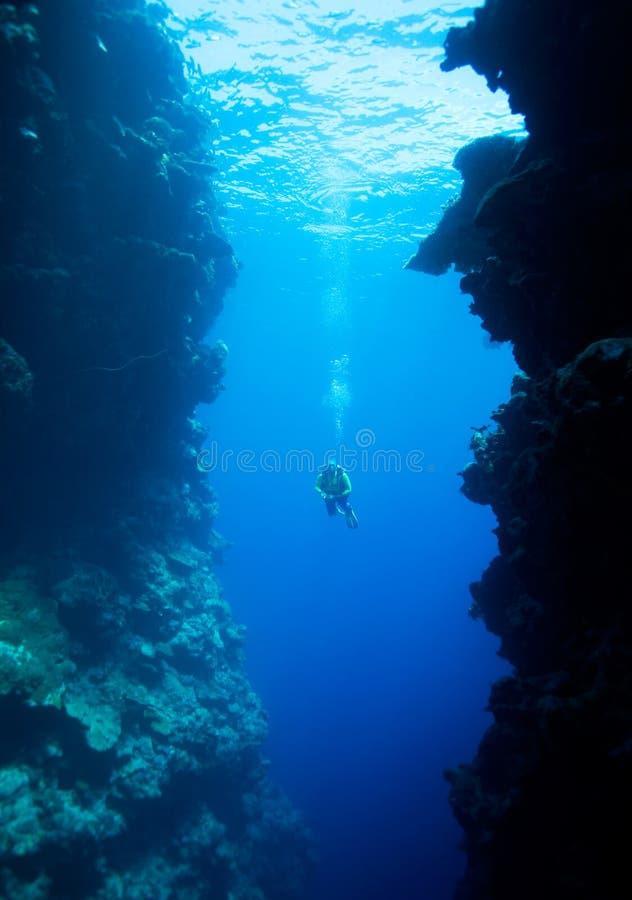 峭壁水下潜水员的游泳 库存照片