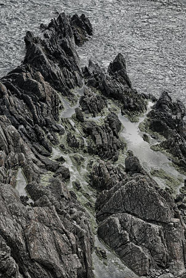 峭壁海风景,在Eyemouth、诺森伯兰角和苏格兰边区附近 库存照片