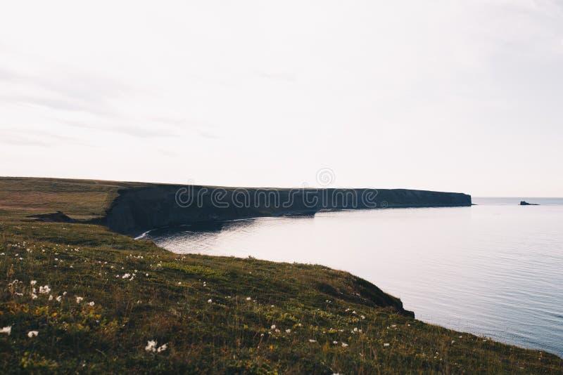 峭壁的冰岛风景 免版税库存照片