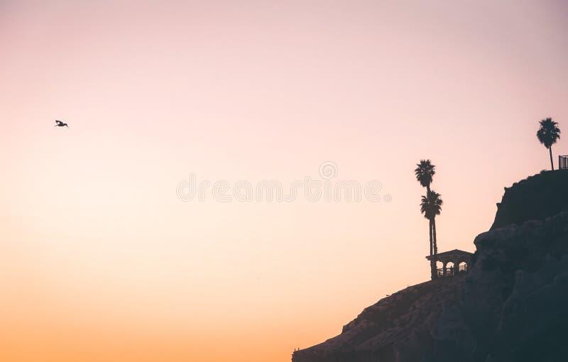 峭壁的剪影在日落丝毫的在距离的鹈鹕飞行与文本的空间 库存图片
